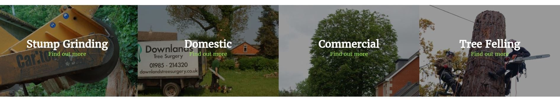Downlands new website services